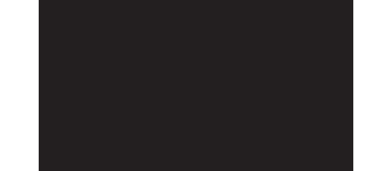 BVN Architecture Logo